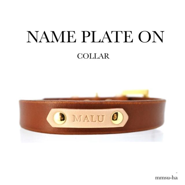 NAME PLATE ON COLLAR