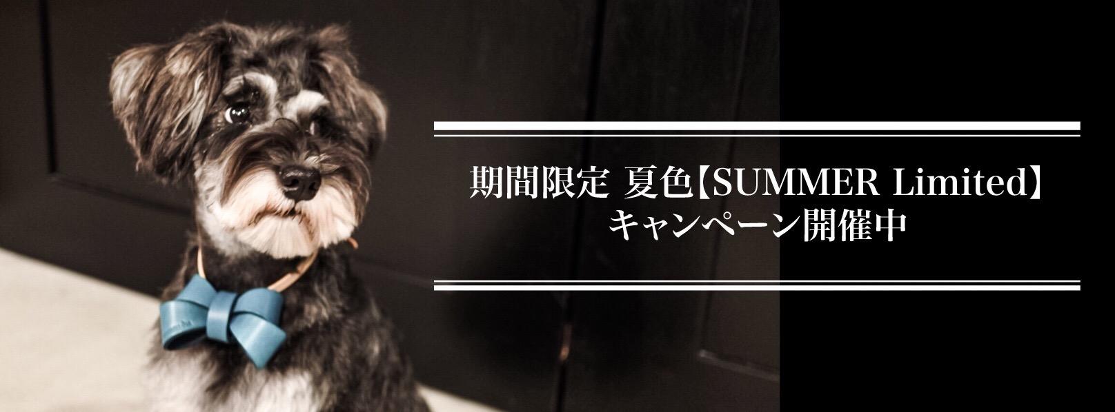 mmsu-ha夏限定首輪リード迷子札キーホルダー